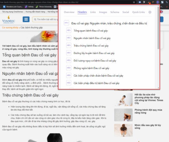 Phân tích top 10 Google